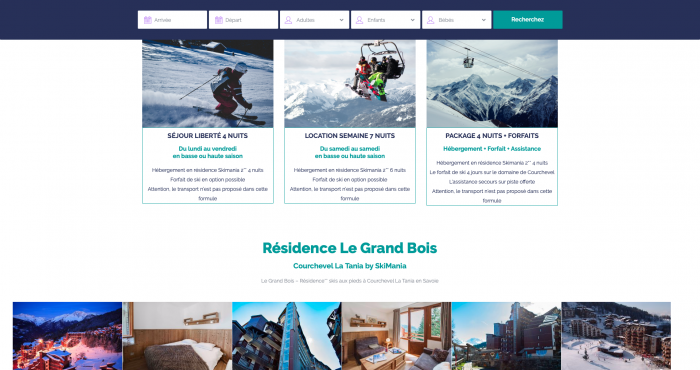 capture d'écran de la page d'accueil du site Skimania Residence